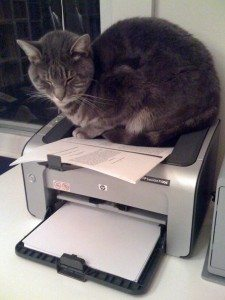 printer-on-by-mava